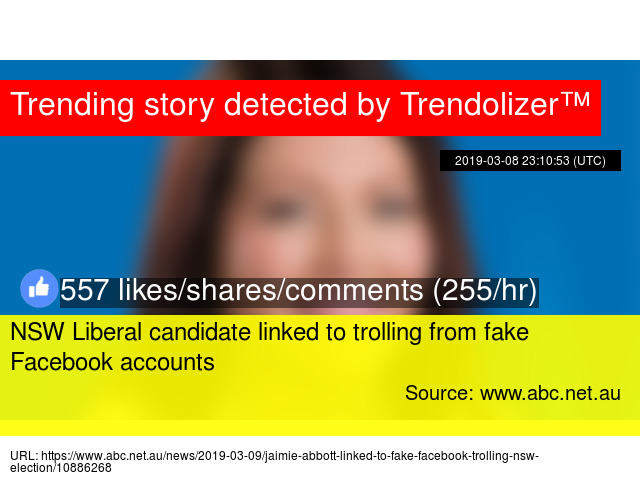 NSW Liberal candidate linked to trolling from fake Facebook accounts